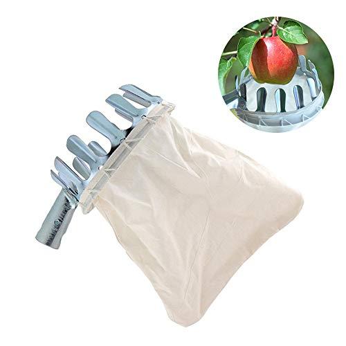 GU YONG TAO Recogedor de Frutas de Acero Inoxidable con Cesta Principal: Herramientas de recolección de Frutas, recolector de Frutas para la Cosecha de Manzanas, cítricos, Peras, duraznos y más