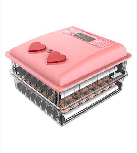 Incubator volautomatische incubator met led temperatuurweergave, broedmachine eieren Automatisch draaien, incubator incubator incubator,36 eier