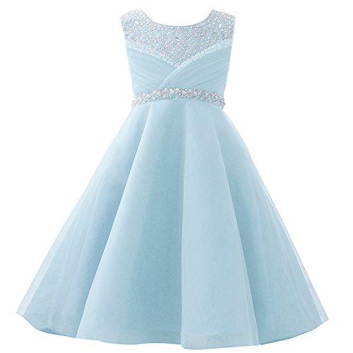Castle Fairy Girls Pageant 2019 Wedding Flower Girl Dresses Pearls First Communion with Bow (12, Light Blue)