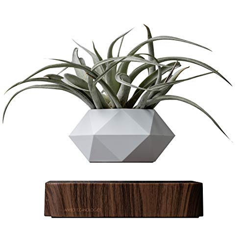 Authentic Levitating Floating Plant Pot for Air Plants - Magnetic Rotating Air Bonsai Planter - Levitating Plant Pot