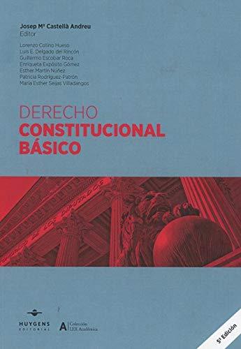 DERECHO CONSTITUCIONAL BASICO 2019