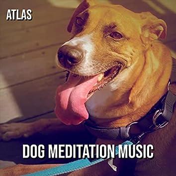 Dog Meditation Music