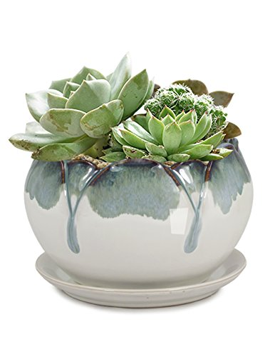 cute cream with blueish-gray drips around the top creamic planter with ceramic drip tray under.  Several succulents inside planter.