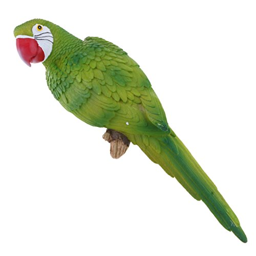 petsola 20 Tipi Realistico Grande Pappagallo Realistico Uccello Ornamento in Resina Modello Animale Statue Fai da Te Prato Scultura Albero Decor Colore Singol - Verde, 38cm