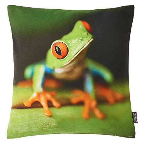 Proflax Kissenhülle Froggy | 500 Gruen - 40 x 40 cm