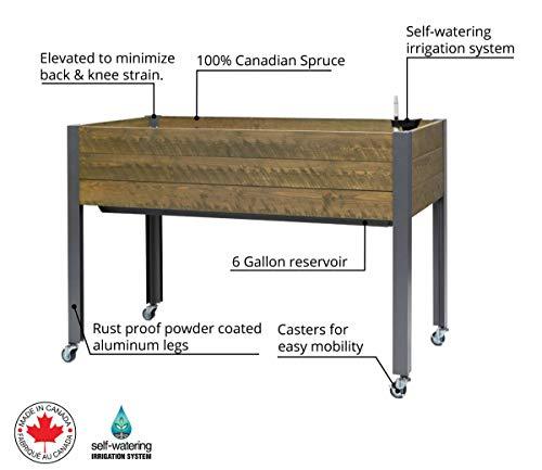 CedarCraft Self-Watering Elevated Spruce Planter (21