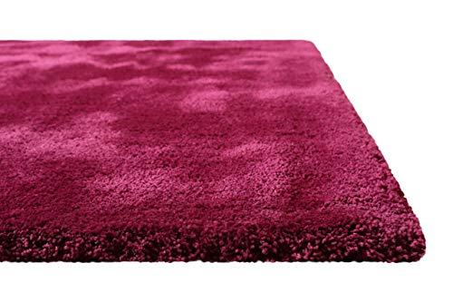 Homie Living I Hochflor Teppich Uni I Modern, weich, flauschig, kuschelig I Für Wohnzimmer Schlafzimmer I Pisa I (70 x 140 cm, Violett)