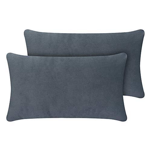 Selfitex Juego de 2 cojines para sofá con relleno y funda de terciopelo elegante, muy mullidos y suaves con relleno, fabricados en Alemania (gris delfín, 30 x 50 cm)
