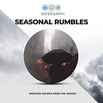 Seasonal Rumbles: Weather Sounds from the Woods