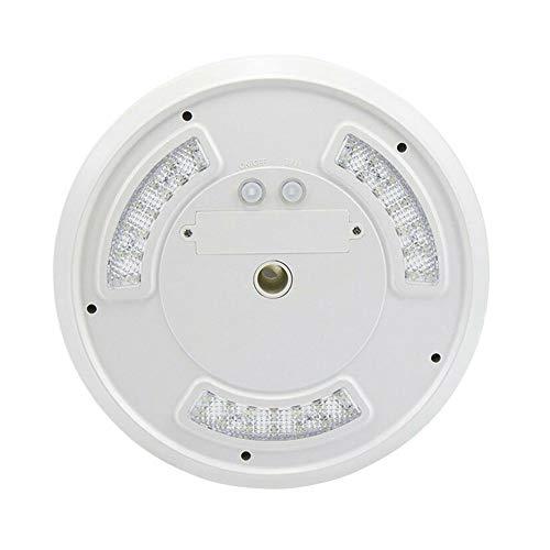 Whiie891203 Solar Fahnenmast Licht, Fahnenmast Licht, 42-LED Solar Power wasserdichte Fahnenmast Licht Outdoor Camping Zelt Nachtlampe Weiß