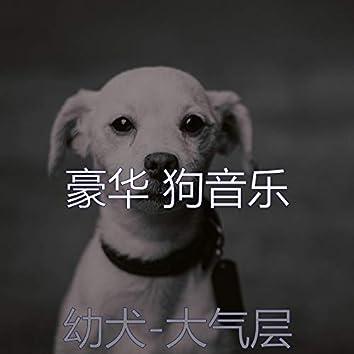 幼犬-大气层