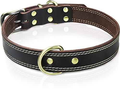 Taglory Hundehalsband Leder, Hundehalsbänder mit Doppel D-Ringe für Kleine Hunde, Verstellbare und Naturleder, Dunkelbraun