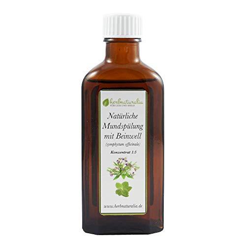 herbnaturalia ® Beinwell Mundspülung Konzentrat (100ml) mit Beinwell Essenz, Xylitol & Minzöl - Ergibt ca. 500ml hochwertige Mundspülung