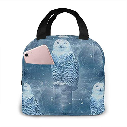 shenguang Snowy Owl in Winter Lunch Bag Cooler Bag Women Tote Bag Insulated Lunch Box Water-Resistant Thermal Lunch Bag Soft Liner Lunch Bags for Women/Picnic/Boating/Beach/Fishing/Work