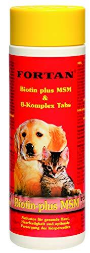 Fortan Fortan Biotin+MSM Tabs, 1er Pack (1 x 100 g)