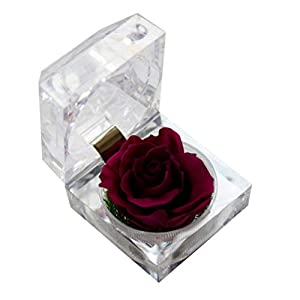 Silk Flower Arrangements STOBOK Eternal Rose Present Immortal Rose Flowers Gift for Women Girl Birthday, Anniversary, Valentines Day, Mothers Day, Christmas, Thanksgiving, Holiday Present (White)