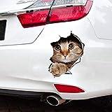 Auto Aufkleber Kätzchen - 13 * 18cm thumbnail