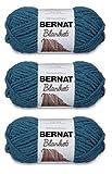 Bernat 161200-745 Blanket Yarn - Dark Teal