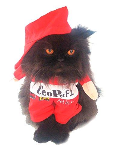 Formule Super mignon chien chat robe d'Halloween drôle pour voiture de course F1 Driver