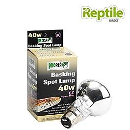 ProRep Basking Spot Lamps BC