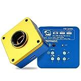 HYY-YY Microscopio estéreo trinocular con zoom digital LCD, gran angular HD estereoscópico para el mantenimiento del teléfono móvil, microscopio multifuncional (color: MATX DX 340)