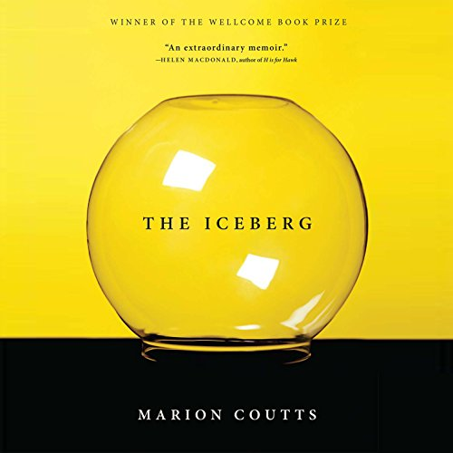 The Iceberg audiobook cover art