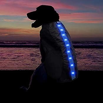 Grand Bleu Veste de Sécurité avec Bandes Réfléchissantes LED pour Chiens Safe Gilet de Sécurité LED Blouson Chien Gilet de Haute Visibilité Veste Impermeable Chien Gilet LED Clignotant