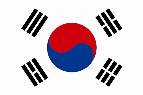 U24 Fahne Flagge Süd Korea 150 x 250 cm