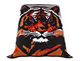 Premium Thick Blanket with Double Layer Reversible Plush Raschel Blanket Tiger Printed - Supersoft, Warm, Silky, Fade Resistant in Queen Size (79'x87', R01- Tiger Head)