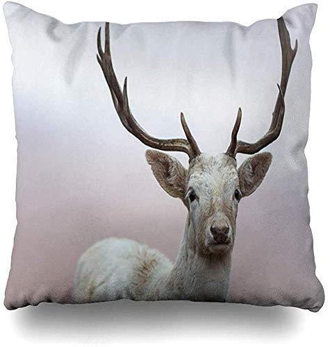 EstherMi19 - Funda de almohada decorativa con ciervo blanco con cabeza de cuernos y pelo de pato de animal blanco Mammal Nature cuadrada, 45,7 x 45,7 cm, funda de almohada con cierre para dormitorio, sala de estar