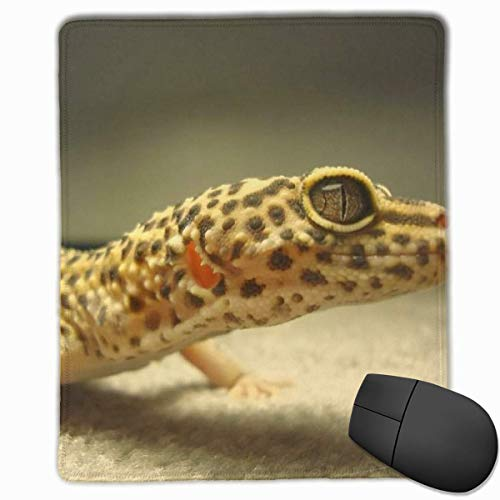 Glatte Mauspad Sand Leopard Gecko Mobile Gaming Mousepad Arbeit Mouse Pad Office Pad