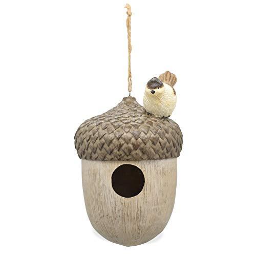 Matches21 Vogelhuisje, hangend eikel met vogel, vogelhuisje, voederhuis, nestkast, polyhars, tuindecoratie, 1 stuk Ø 14,5 cm