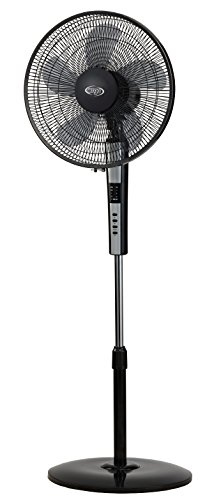 Argoclima 398200011 Ventilador de pie, pantalla LED y mando, 240 V, Negro, 155 cm