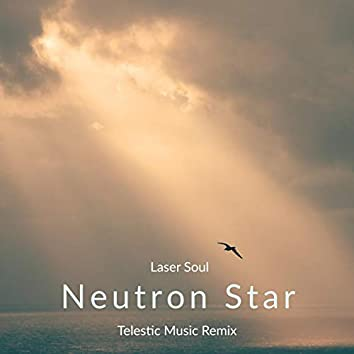 Neutron Star (Telestic Music Remix)