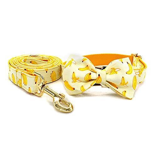 Zzcr Collar De Perro Mascota Collar con Hebilla Conjunto De Correa Collar De Perro Pequeño Y Mediano Collar De Seguridad Anti-Perdida Amarillo L