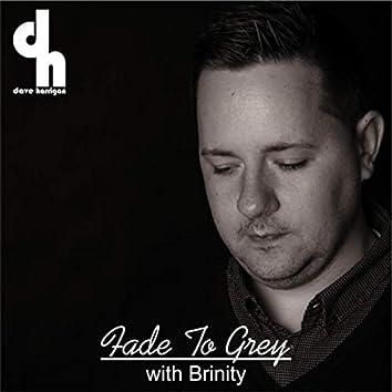 Fade to Grey (Ambient Version) [feat. Brinity]