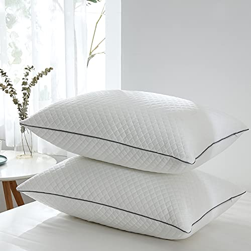 Pillows Queen Size Set of 2,Luxury Velvet Hypoallergenic Bed Pillows for Sleeping, Hotel Fluffy Pillow Set, Soft Firm Adjustable Down Alternative Pillows for Side, Back, Stomach Sleepers -20'x30'