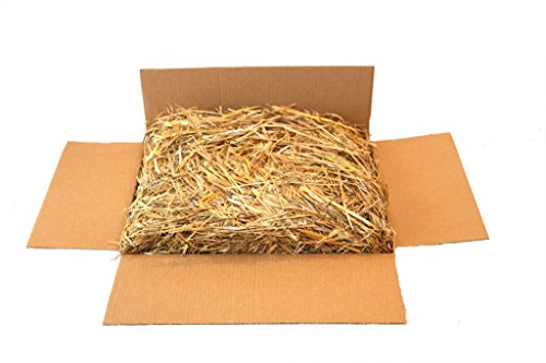 Price comparison product image The Kitty Tube Wisc. Grown Oat Straw