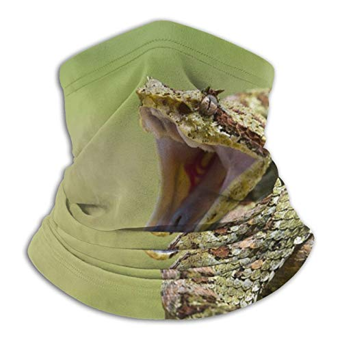 Towel&bag Fierce Snake Cobra Sports Outdoor Sports Turban Nackenschutz mit Turban Schwarz