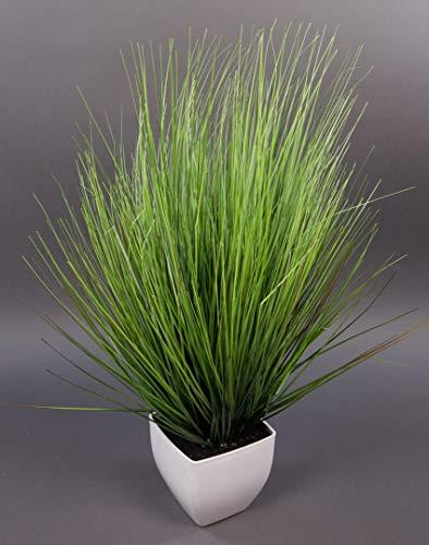 Seidenblumen Roß Dekogras 62x45cm im weißen Topf DP künstliches Gras Kunstpflanzen Kunstgras künstliche Pflanzen Solitärgras Ziergras