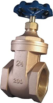 "Watts WGV 2 1/2"" Brass Gate Valve (0770130) from Watts"