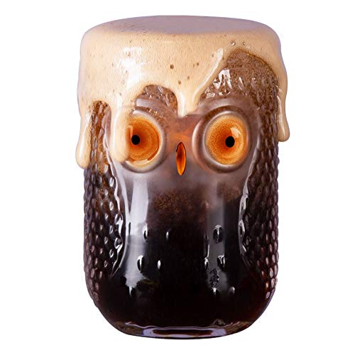 Vasos de cristal de búho para beber, de cristal de pinta, para...