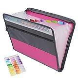 Clasificadores Carpetas de Acordeón, Portátil Bolsa de Documentos de Cremallera Extensible A4 Organizador de Archivos con 13 Compartimientos y Etiqueta de Color