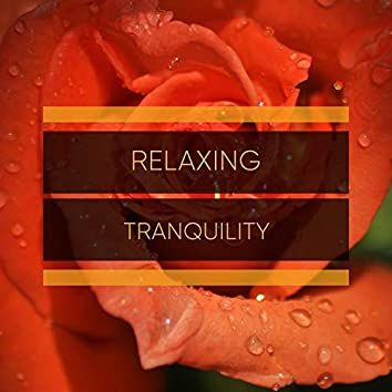 """""""Relaxing Tranquility"""""""
