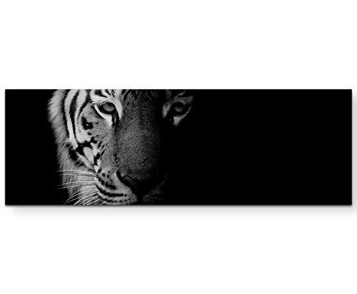 Paul Sinus Art Leinwandbilder   Bilder Leinwand 120x40cm Portrait Tiger schwarz/weiß