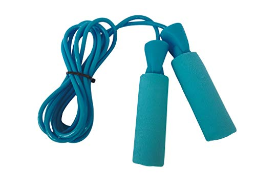 Burnlab Skipping Rope for Gym, Cardio, Crossfit, Weight Loss - for Women and Men (Blue)