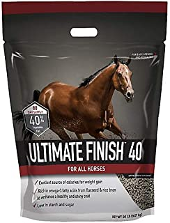 Best ultimate finish 40 Reviews