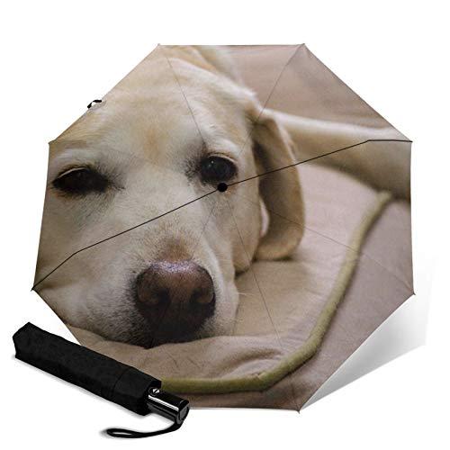 Paraguas de viaje de apertura automática, compacto, plegable, protección contra el sol y la lluvia, resistente al viento, paraguas portátil para niños, mujeres, hombres