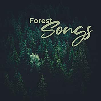 Forest Songs: Relaxing Music & Sounds of Nature Reproducing the Unique Atmosphere of the Forest
