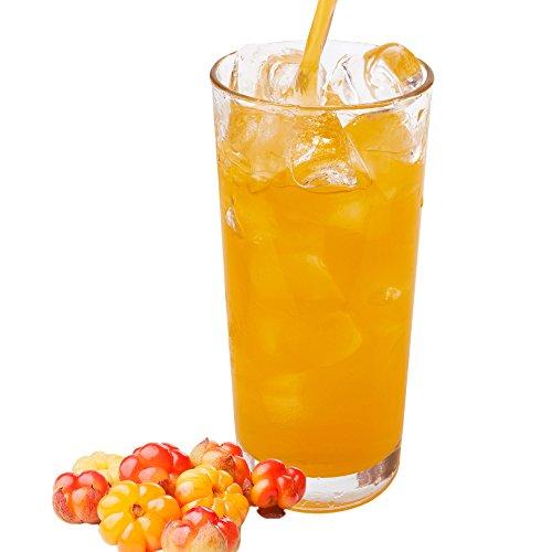 Skandinavische Früchte Geschmack extrem ergiebiges Getränkepulver für Isotonisches Sportgetränk Energy-Drink ISO-Drink Elektrolytgetränk Wellnessdrink (333 g)